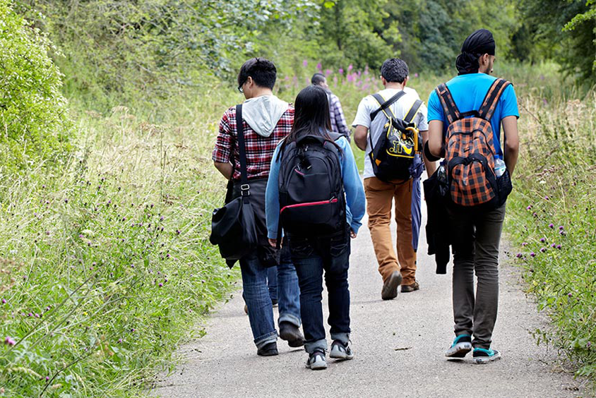 Students walking down path looking at the greenery of Sheffield